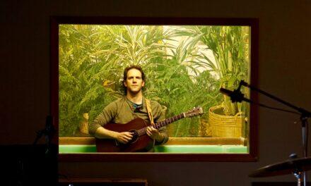 E.71: David Nash | Musician
