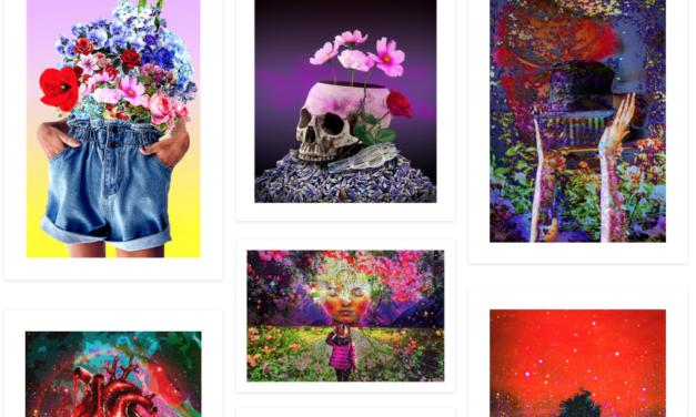E.113: Maureen Ashley Turner | Graphic Artist & Photographer